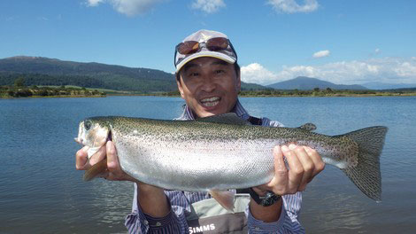 Lake Otamangakau  Rainbow Trout