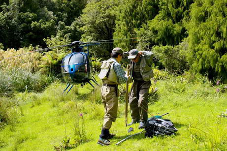 Helicopter fishing New Zealand